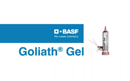 goliath gel  basf